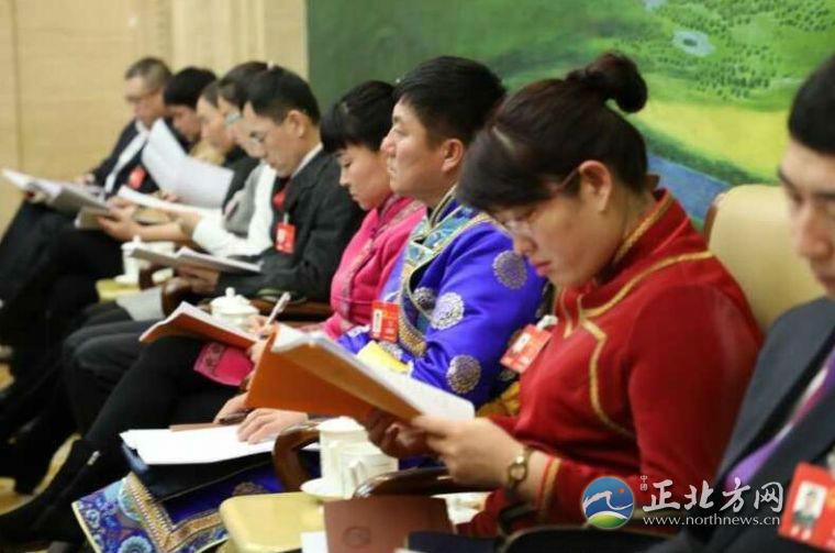 内蒙古自治区人大代表分组审议政府工作报告