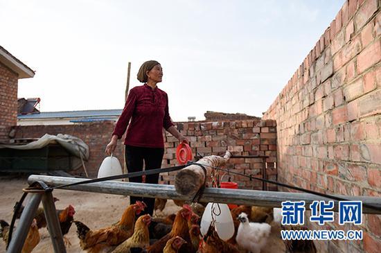 图为李耀梅在给鸡喂水。(冯开华 摄)