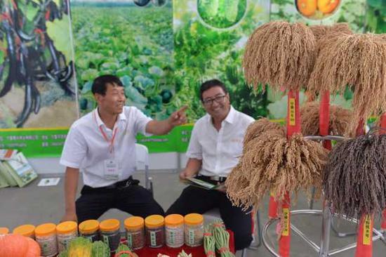 客商与种子公司洽谈合作。