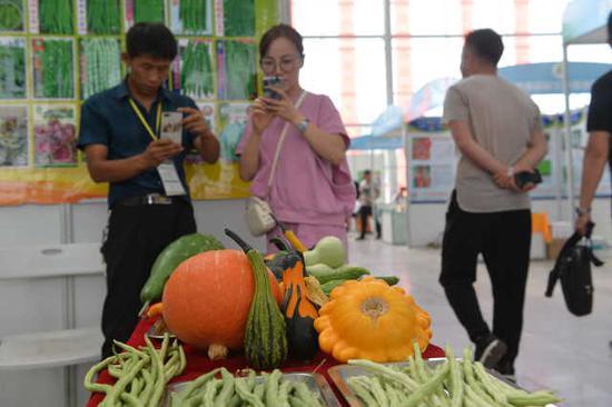 游客纷纷在品种展示台前拍照。
