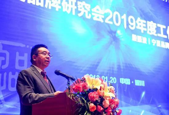 (副会长殷振波做《2019年工作部署报告》)