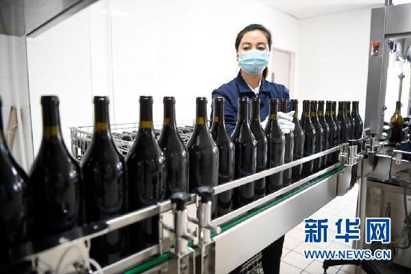 在宁夏银川市永宁县闽宁镇览翠酒庄,工作人员在包装红酒产品(4月21日摄)。新华社记者 唐如峰 摄