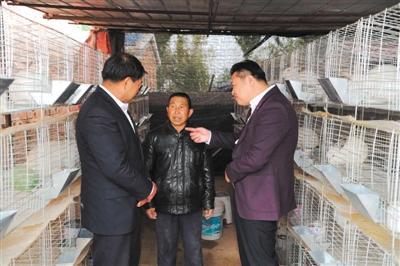 养殖户海林(中)与村干部、兔业公司负责人在一起。
