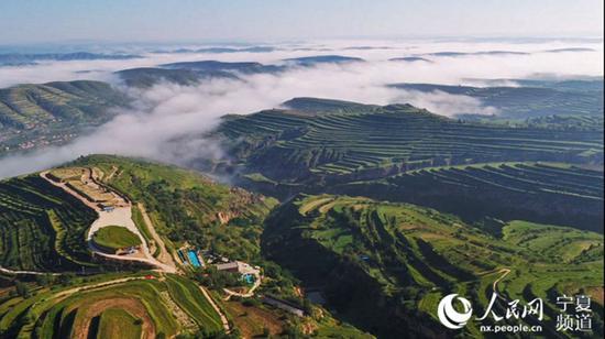 闽商在固原山区建设的牡丹山庄种植基地。 王艳春供图