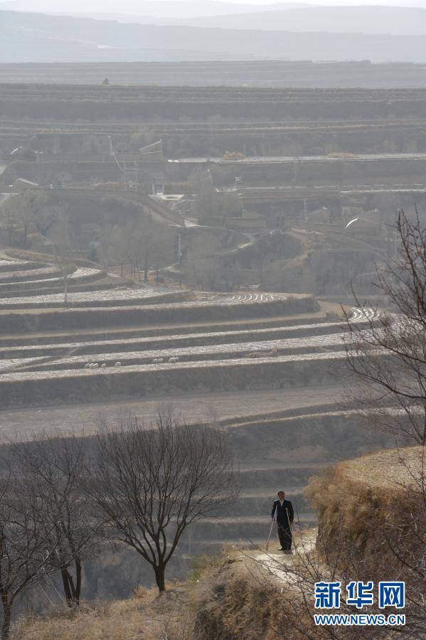 张俊明拄着双拐走在固原市彭阳县红白阳镇沟壑纵横的旱塬上(2013年6月15日摄)。