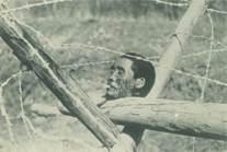 图为被日军砍下一中国人的头颅被放在路障上,嘴里被塞进半截香烟。