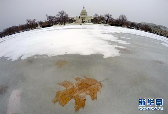 """华盛顿的""""冰河世纪"""",就差个小松鼠。"""