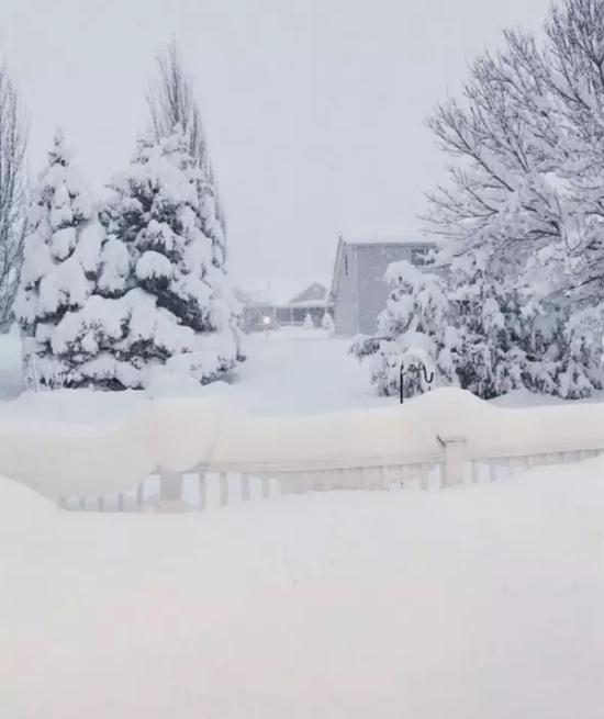 暴风雪带给北美人民一个白色圣诞节,