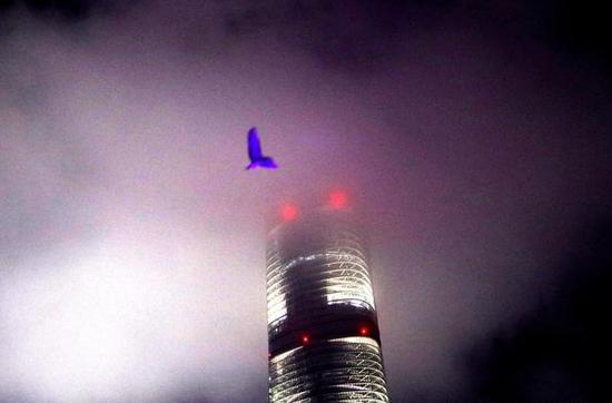 2018年5月11日,夜色下的上海中心。刘宇摄