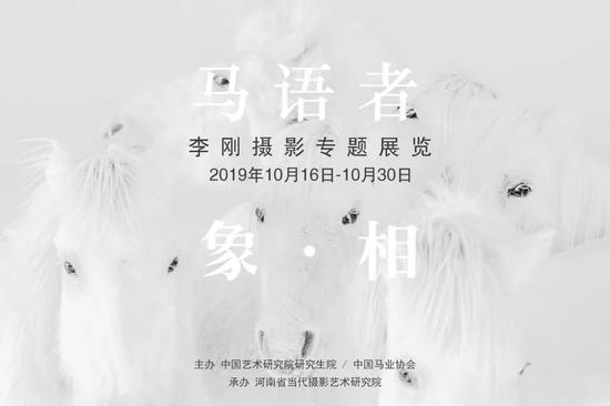 展讯 I 马语者 象 · 相-李刚摄影专题展