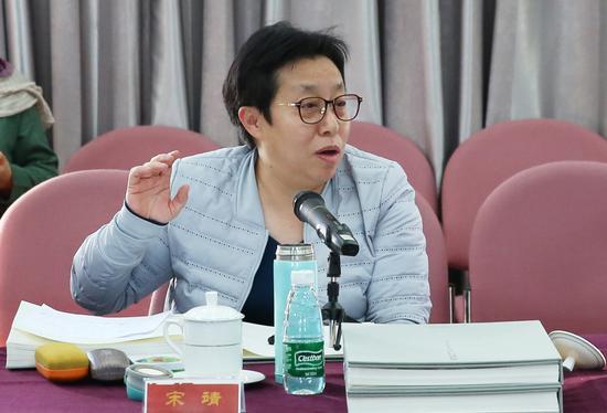 宋靖在研讨会上发言。摄影:徐申