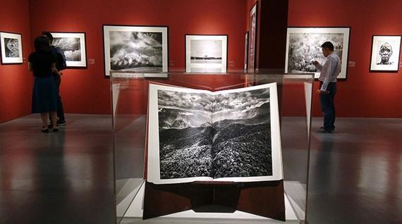 文新浪专栏 品图 孔繁利   2015年10月下旬,塞巴斯蒂安萨尔加多的《创世纪》主题影展全球巡展来到中国。摄影师历时8年踏遍五湖四海偏山僻壤全球32个地区所拍摄的作品精选,在上海自然博物馆的展厅与观众见面了。   这场影展没有选在美术馆、艺术街区、所谓艺术购物中心等等,这些地方,而是选中了相得益彰的上海自然博物馆。   从极地冰川到热带雨林,从非洲部落到东南亚初民,245幅关于大自然山水动植物以及原始部的影像,份量满满布局巧妙地呈现在观众眼前。   它是地球壮美秀丽的风光片,也是规模浩大的原始部