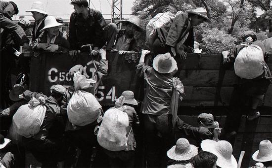 麦客 陕西关中1982-2000(2)