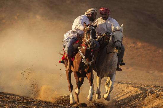 《赛马》  努发利·本·赛义德·本·萨利姆·陆兹基  摄影