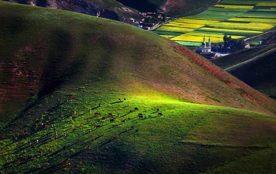 美丽的山坡   冯木波  摄影
