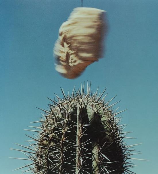 《景色》系列,Michel Szulc-Krzyzanowski作品,1995-1997