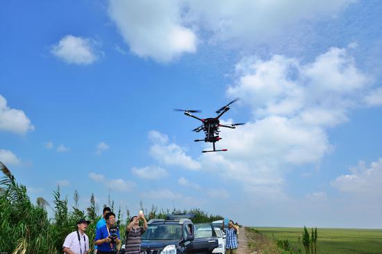 2015年9月,上海,崇明东滩湿地,一群无人机爱好者来此航拍。供图|视觉中国