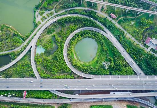 戴家湖公园,武汉。2017.6.16