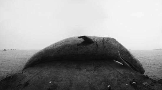 侯帅作品《第二世界》(视频裁图)