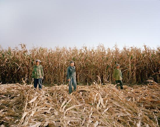 《消失的土地》 2009