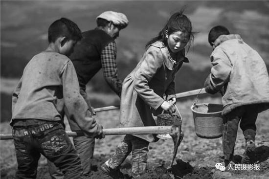 2016年3月14日,他们从小就劳作在田地里。