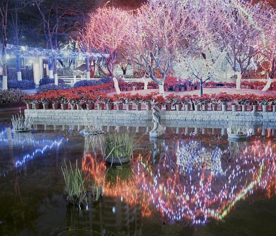 ▲ '哈内姆勒·新锐摄影师奖'彭可《盐水池塘 Salt Ponds》