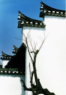 陈复礼《白墙》1988年