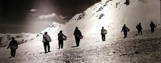 (1959年6月,甘肃融冰化雪大队在冰川上铺撒黑色物质,加速冰层融化-新华社稿 张培元 摄)