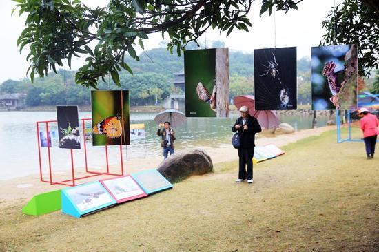 2018年1月7日,2018东莞市民摄影周开幕暨《鸟颜色》新书首发式,活动现场。郑家雄摄