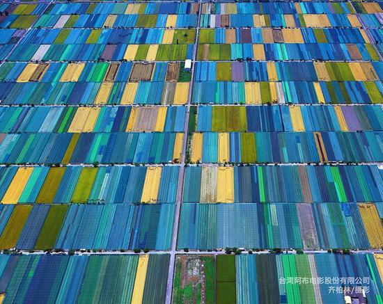 云林-网室农业