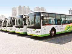 """青岛304路开通""""旅游区间车"""" 59个站点缩至11个"""