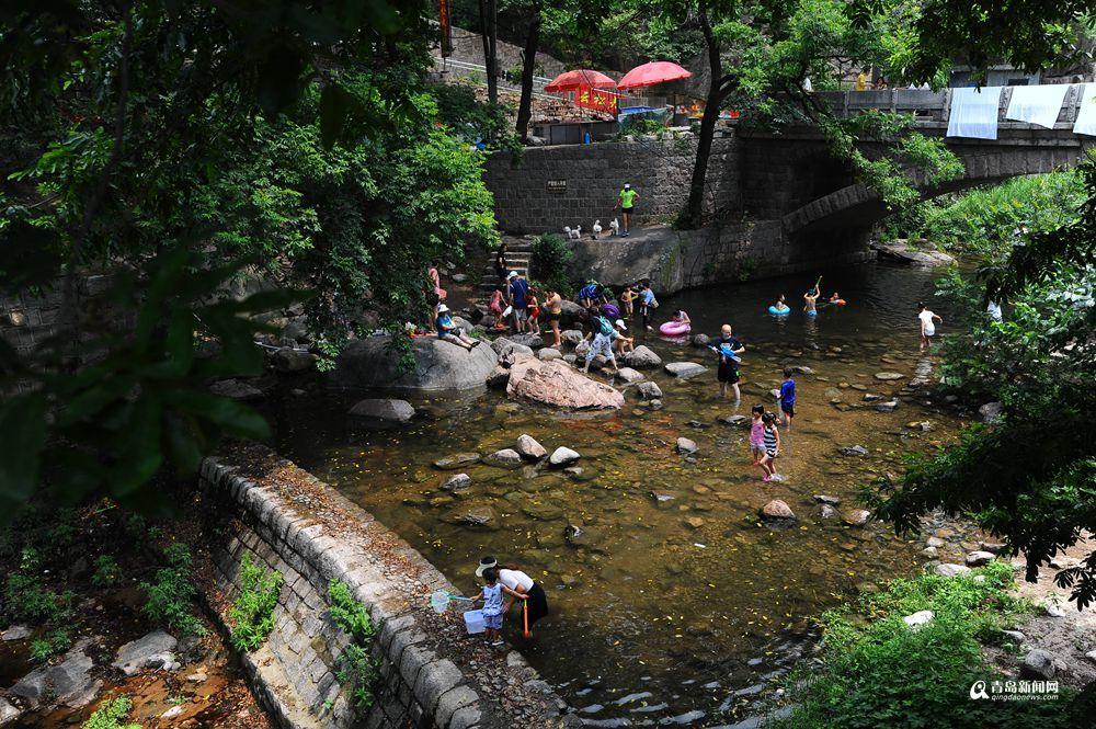 中午头29℃ 崂山北线市民溪水避暑超嗨