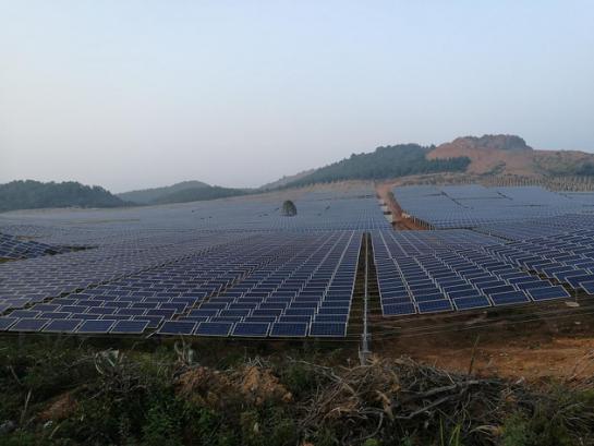 新余茂硕新能源何家边20MW林光互补项目现场