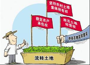 """""""三权分置""""为土地流转提供了法律基础,从而使规模化的平整土地,大规模机械化作业成为可能,促进农业的产业化发展。"""