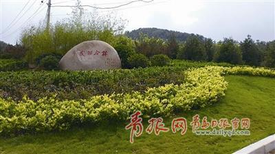 李沧区双峰山拆违后建成的绿地。 周 欣 摄