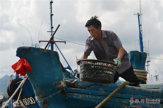 2017年9月4日,在青岛市中心渔港,捕捞归来的渔船正在卸货。