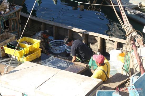 下午的3—5点正是小港码头最忙碌的时候,早晨出海的渔民在这个点返航。