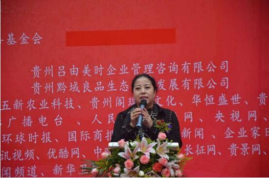 李琳公益慈善基金会理事长李琳致辞
