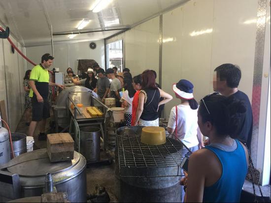 澳星墨尔本公司组织当地客户参观澳洲本土老牌蜂蜜厂