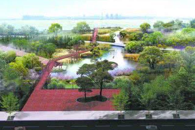 城阳河岸变身绿色长廊