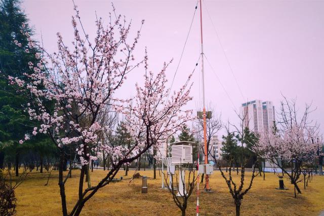 青岛出台方案,力争2020年温室气体排放达到峰值