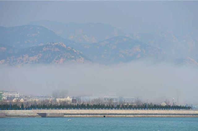 岛城出现平流雾 摄影师实拍云海漫山美轮美奂