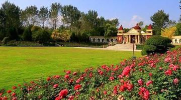 国庆长假济南植物园秋季花卉开得烂漫