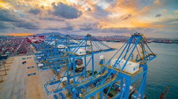 航拍山东港口青岛港 大型机械全力开动
