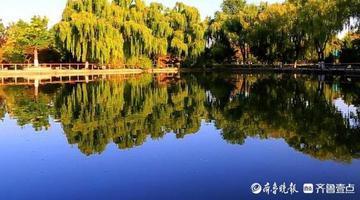 济南植物园秋日色彩浓艳灼人