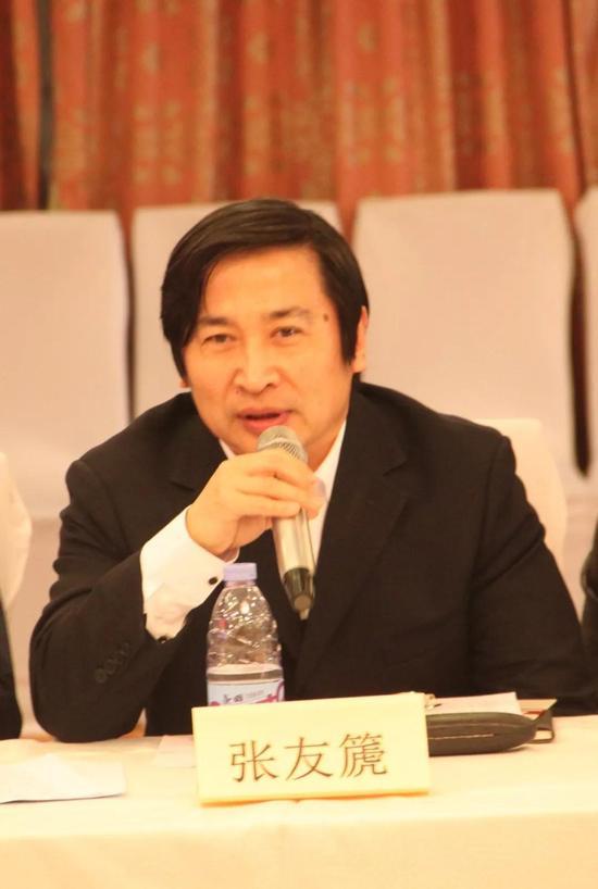 副秘书长张友篪在工作会议上发言