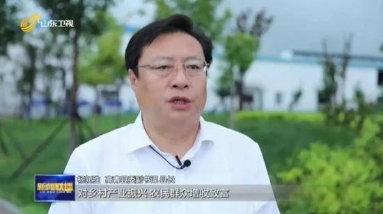 高青县委副书记 县长 杨新胜