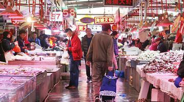 逛春日的海鲜市场 你猜啥卖得最火
