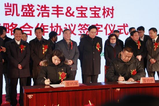 凯盛浩丰马铁军总经理与宝宝树沙鷗总监,签署战略合作协议