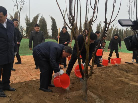 嘉宾种植希望树,陵城产业园项目启动。